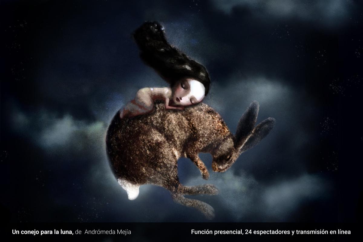 Un conejo para la luna